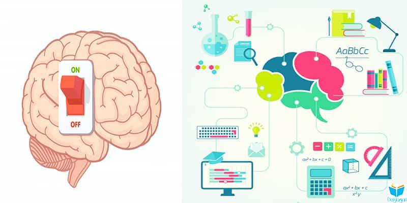 akıl ve zeka nedir - zeka kuramları nedir
